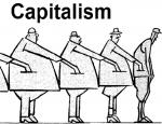 Чем социализм четко отличается от капитализма – как пудель от бульдога
