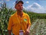 Американский агроном в восторге от фермеров РФ: у вас лучше, чем в США