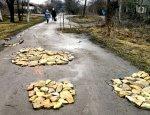 Скинулись даже бабушки: Украинцы за свой счет латают дыры в дорогах
