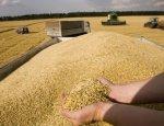 Les Échos: Санкции Запада превратят Россию в сельскохозяйственного гиганта