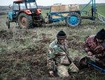 Земельное «поле чудес» или дикая приватизация по-украински