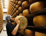 В Россию через ЛДНР: итальянские бизнесмены нашли путь обхода санкций