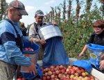 Безвиз вымывает из Украины трудовые ресурсы