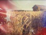 На какой компромисс готовы турки ради российского зерна