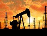 Вопреки санкциям: Российская нефть привлекает иностранных инвесторов