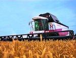 Правительство РФ выделило субсидии на развитие сельских территорий