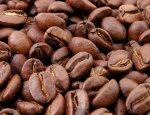 Как Япония стала лидером на рынке кофе, не вырастив ни одного зернышка?
